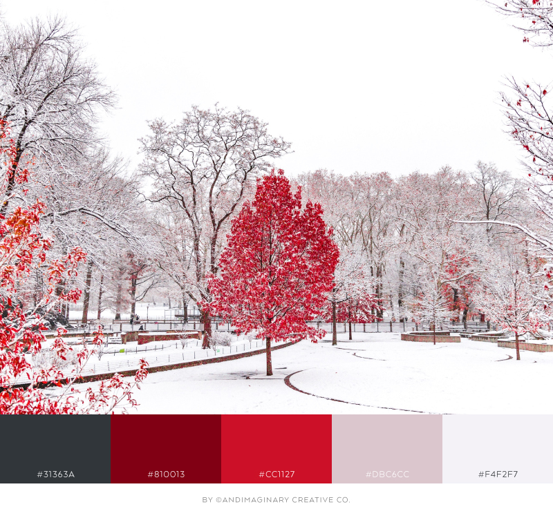 Free fonts, color palettes & stock photos that add a festive feel to your brand