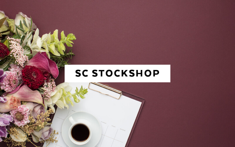 The Best 15 Sites for paid and free stock photos for feminine brands - SC Stockshop